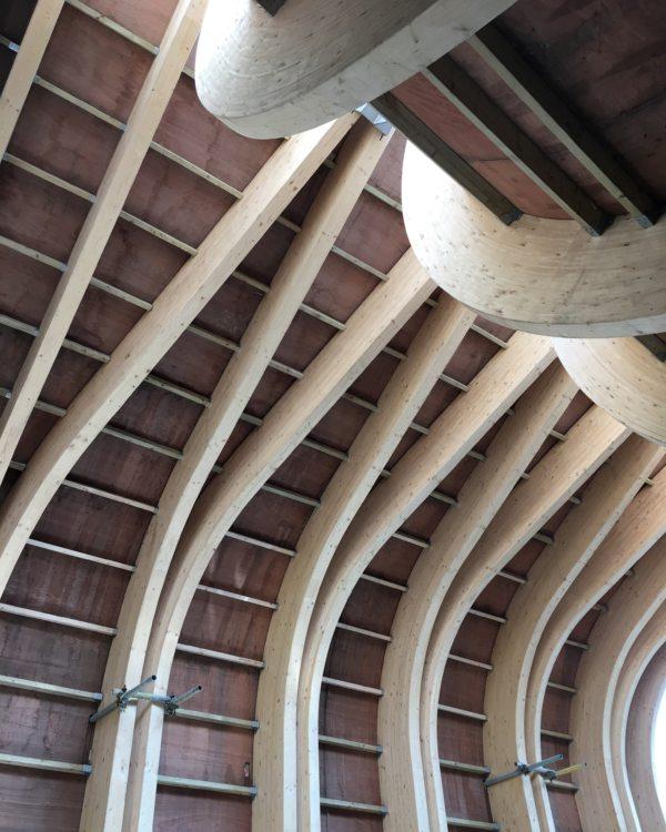 Alison Brooks Cohen Quad Hall Roof